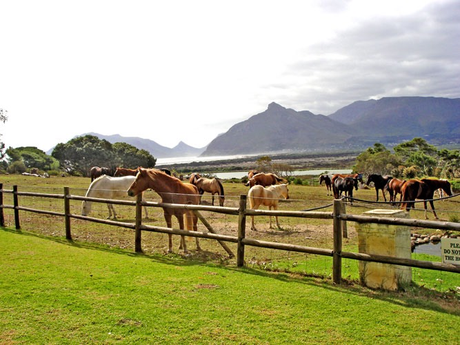 imhoff-view_med