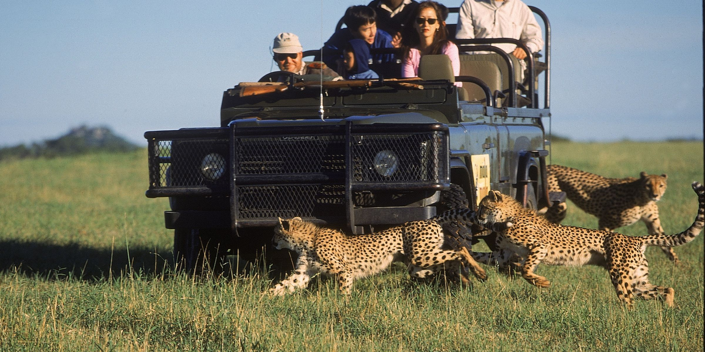 mala-mala-sable-camp-sabi-sand-game-reserve-south-africa-1340