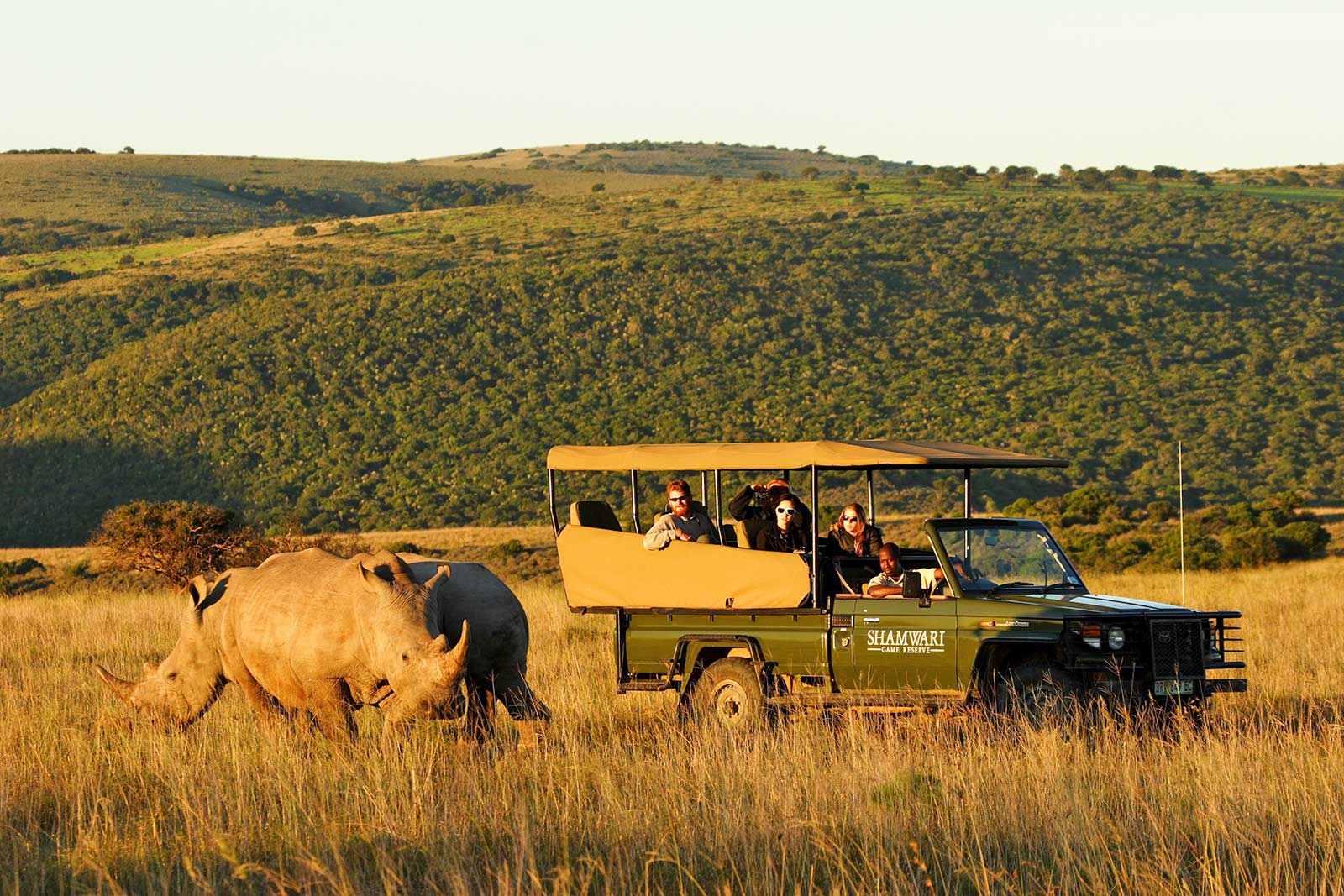 sarili-lodge-shamwari-game-reserve-5