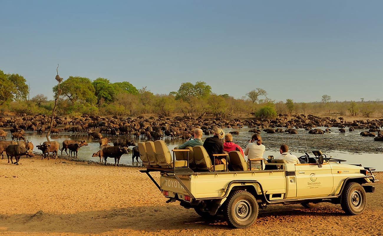 tintswalo-safari-lodge-kruger