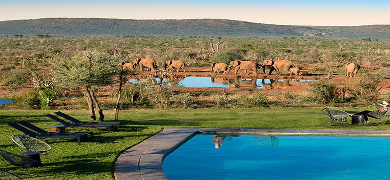 madikwe Lelapa-lodge-pool-exterior